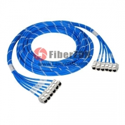 12 Jack to 12 Jack CAT6A Shielded PreTerminated Copper Trunk Cable